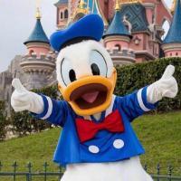 duck不必